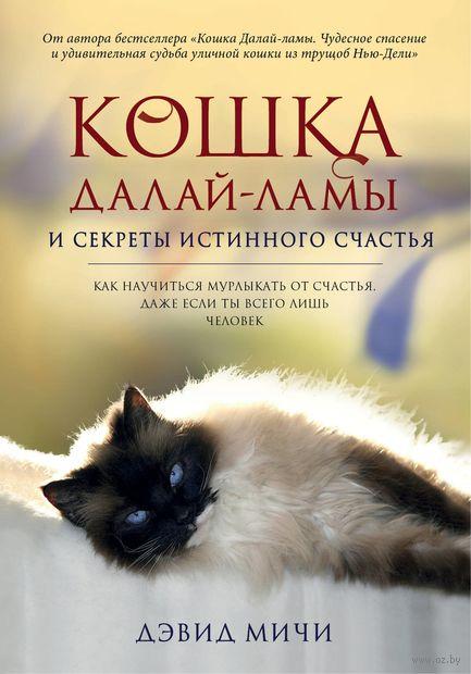 Кошка Далай-Ламы и секреты истинного счастья — фото, картинка