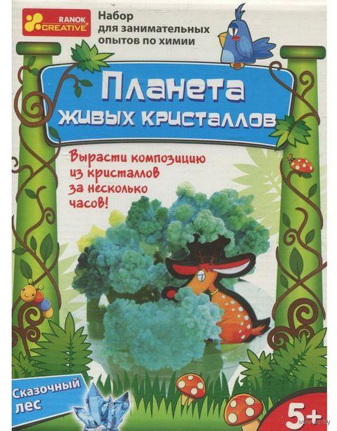 """Набор для выращивания кристаллов """"Планета живых кристаллов. Сказочный лес"""""""