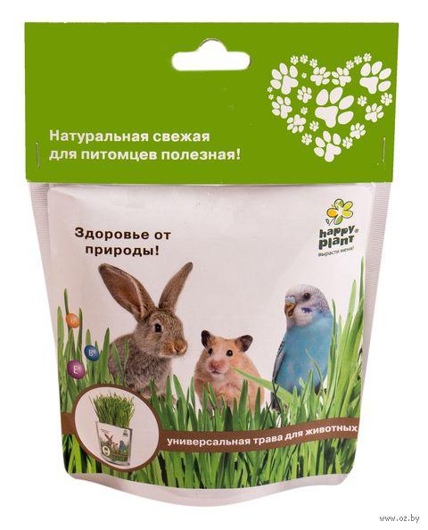 """Набор для выращивания """"Универсальная трава для животных"""" — фото, картинка"""