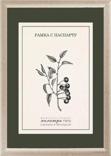 Рамка деревянная с паспарту (15х21 см, арт. П530-02/2086)