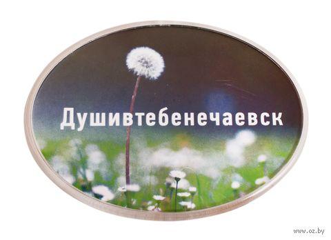 """Магнит душевный """"Душивтебенечаевск"""" — фото, картинка"""