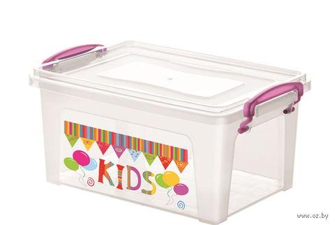 Ящик для хранения пластмассовый с крышкой (15 л; 41х27х17 см)
