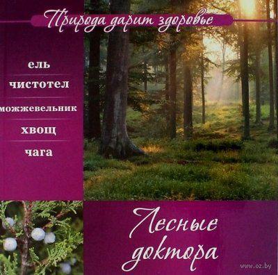 Лесные доктора — фото, картинка