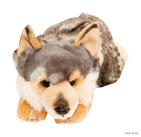 """Мягкая игрушка """"Волк"""" (28 см) — фото, картинка"""