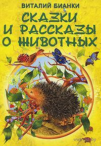 Сказки и рассказы о животных. Виталий Бианки