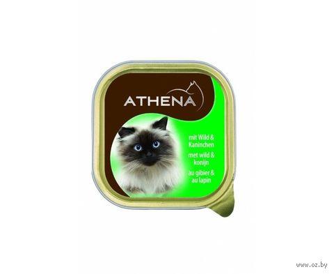 Консервы для кошек (100 г; дичь и кролик) — фото, картинка