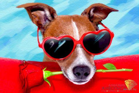 """Алмазная вышивка-мозаика """"Пес с розой"""" (300х200 мм) — фото, картинка"""