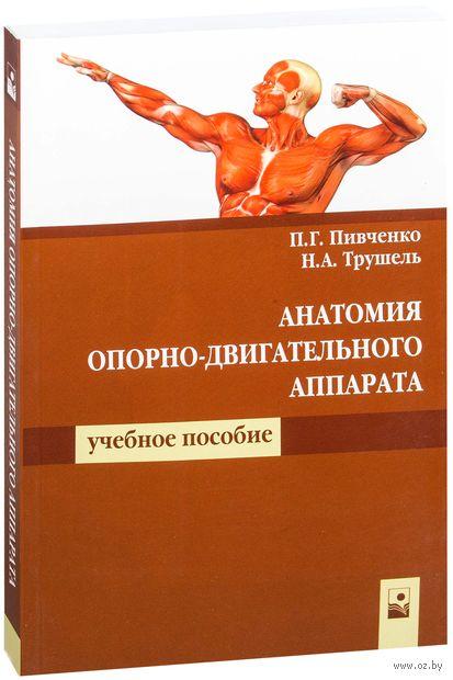 Анатомия опорно-двигательного аппарата. П. Пивченко, Н. Трушель