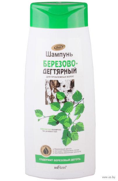 """Шампунь для волос """"Березово-дегтярный"""" (480 мл)"""
