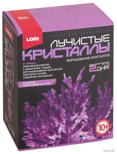 """Набор для выращивания кристаллов """"Лучистые кристаллы. Фиолетовый"""" — фото, картинка"""