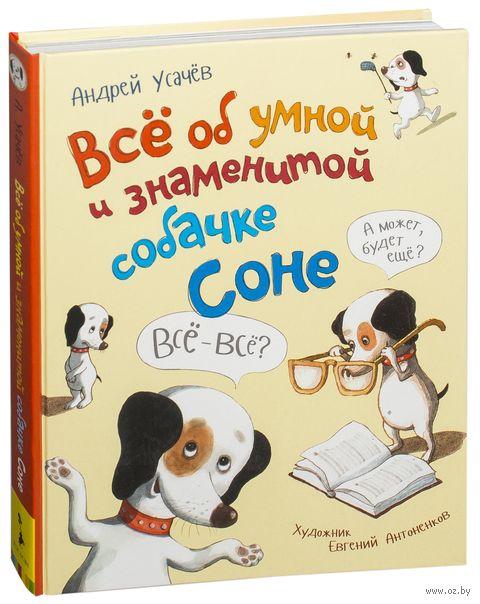 Всё об умной и знаменитой собачке Соне — фото, картинка