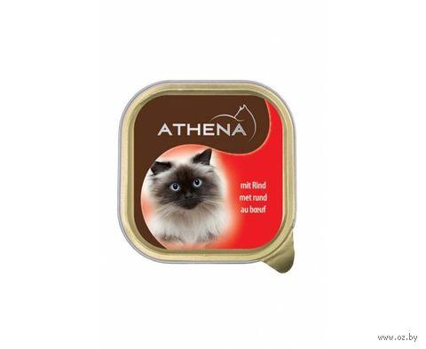 Консервы для кошек (100 г; говядина) — фото, картинка